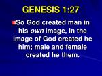 genesis 1 27