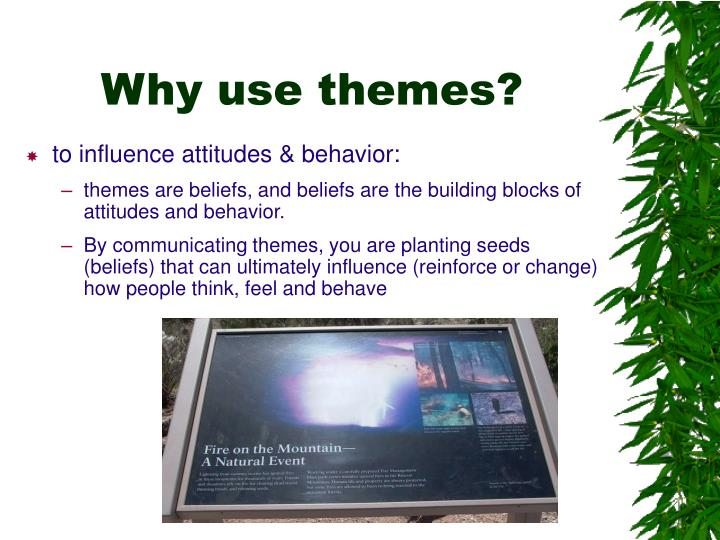 why use thesis theme Thesis theme designer, customized websites for wordpress by green girl  design  it just feels like home and frankly i can't think of a good reason to use.