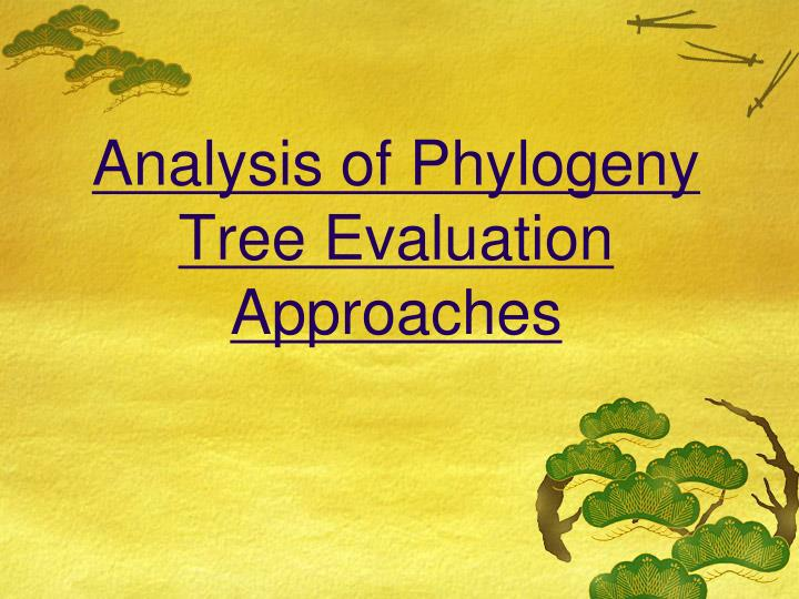 Analysis of phylogeny tree evaluation approaches