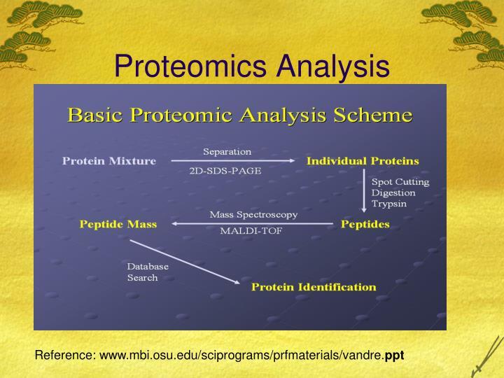Proteomics Analysis