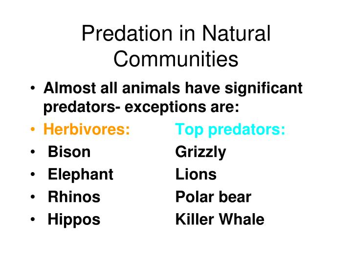 Predation in Natural Communities