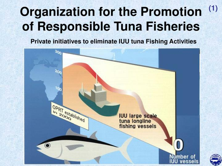 organization for the promotion of responsible tuna fisheries n.
