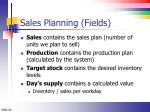 sales planning fields