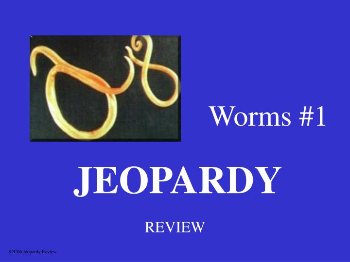 worms 1 n.