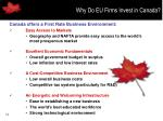 why do eu firms invest in canada