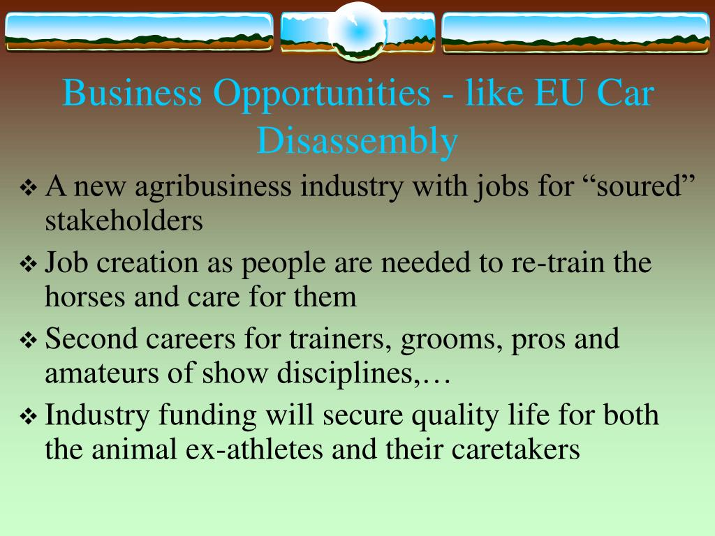 Business Opportunities - like EU Car Disassembly