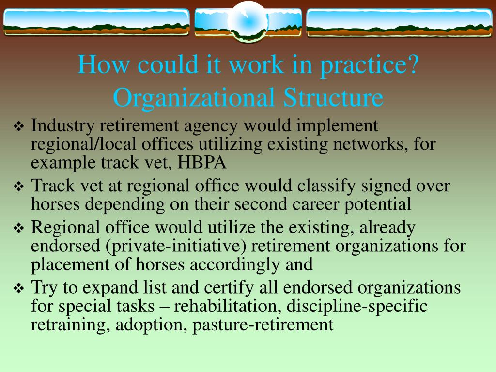 How could it work in practice? Organizational Structure