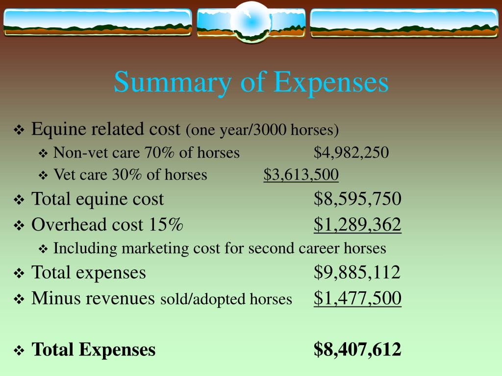 Summary of Expenses