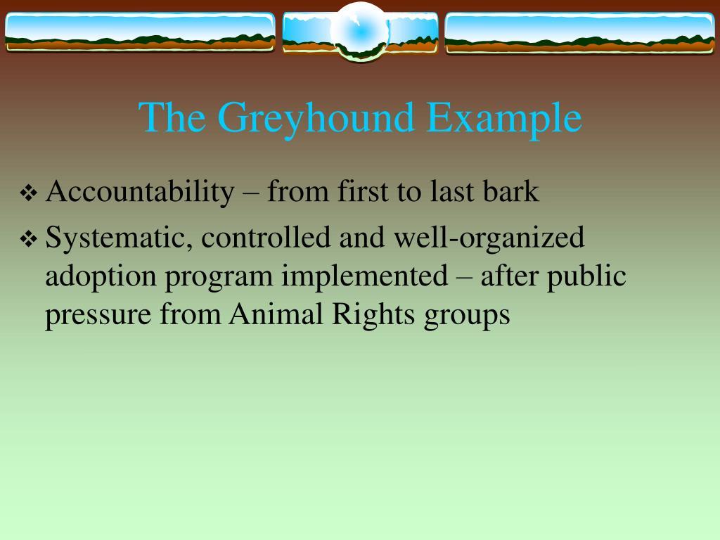 The Greyhound Example