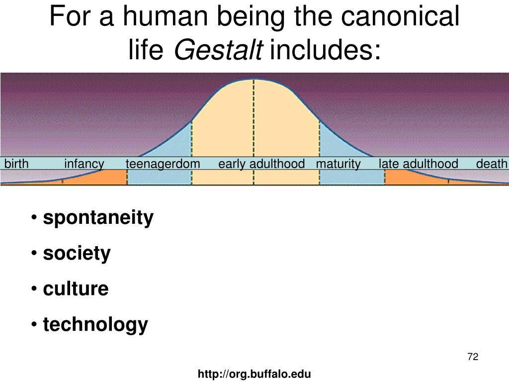 For a human being the canonical life