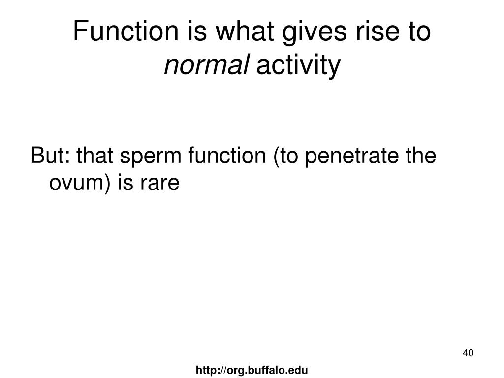 Function is what gives rise to