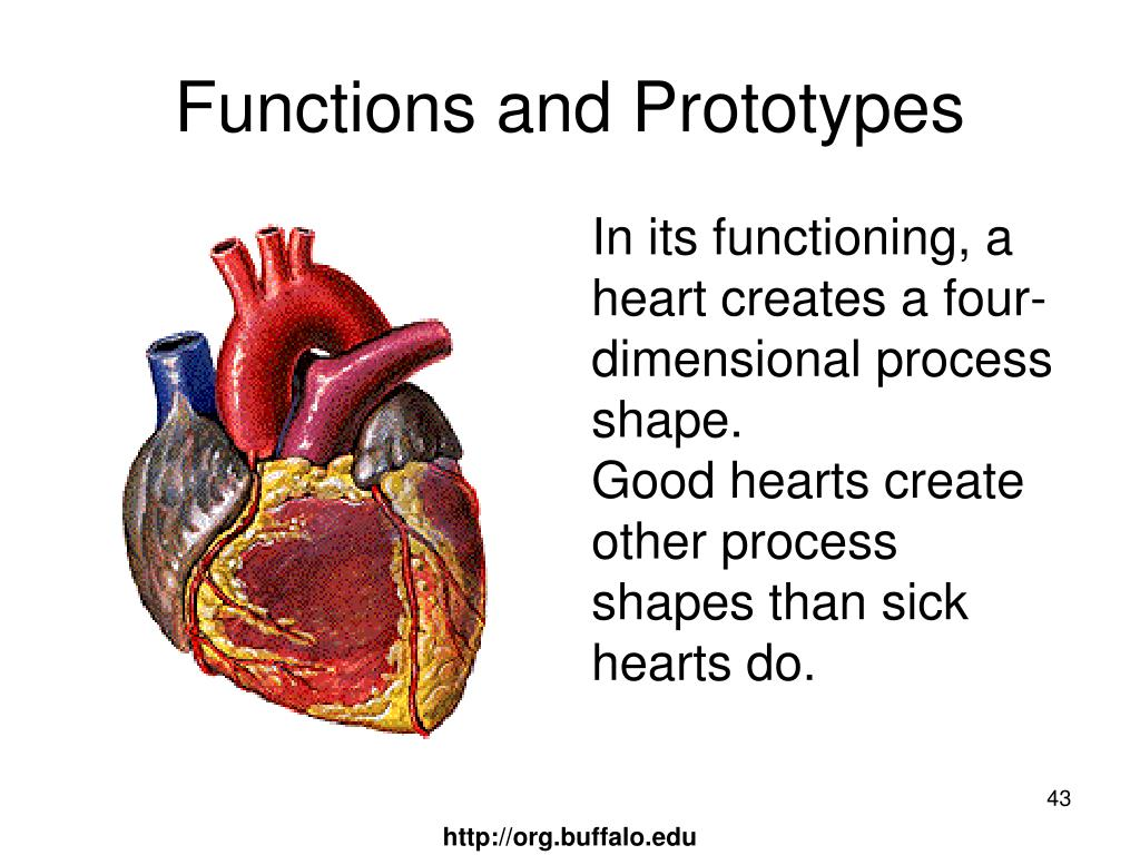 Functions and Prototypes