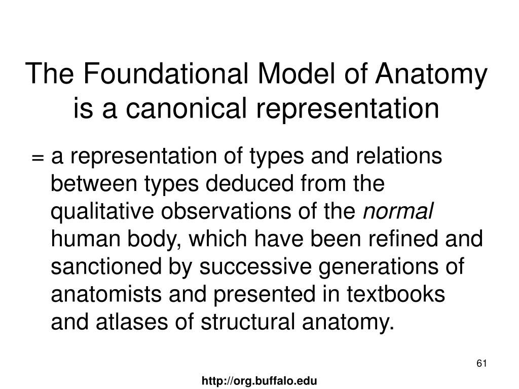 The Foundational Model of Anatomy is a canonical representation