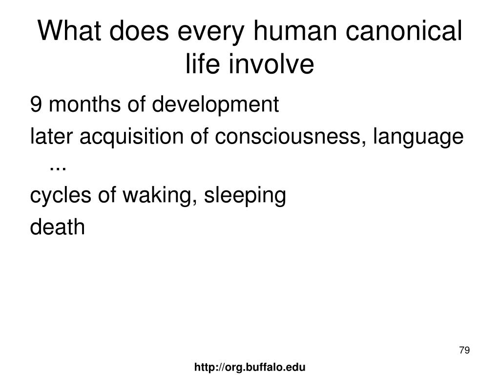 What does every human canonical life involve