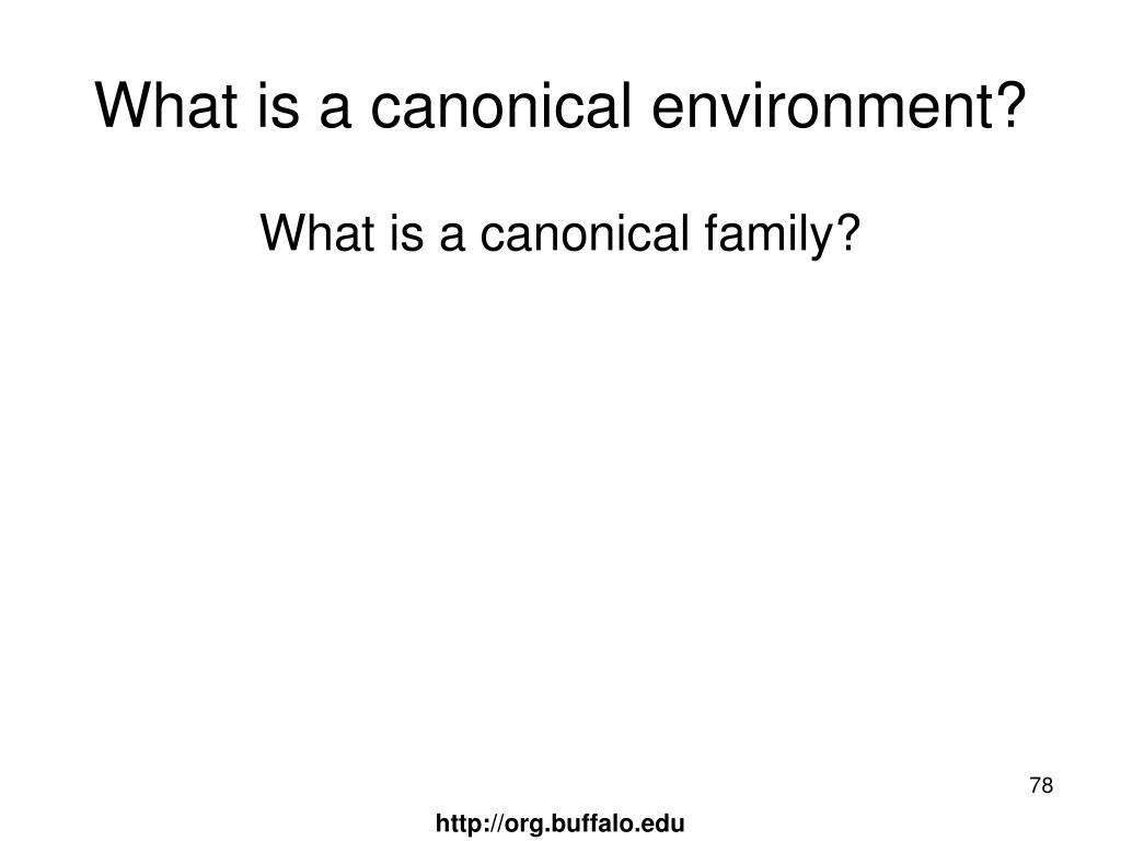 What is a canonical environment?