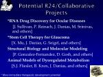 potential r24 collaborative projects