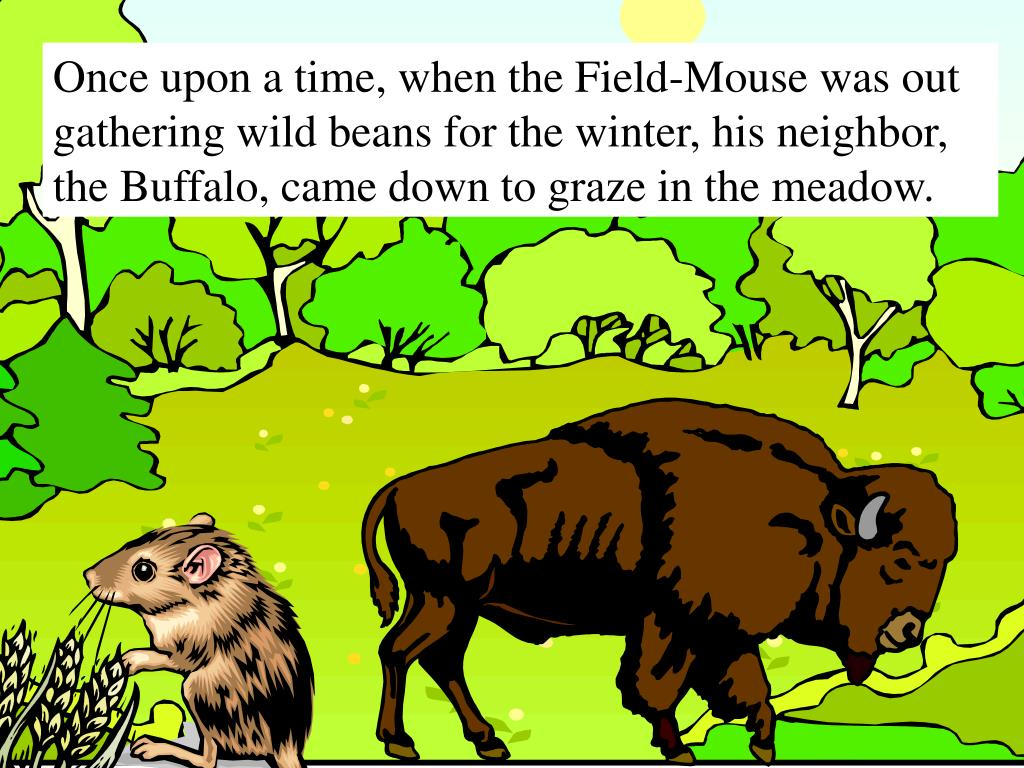 Once upon a time, when the Field-Mouse was out gathering wild beans for the winter, his neighbor, the Buffalo, came down to graze in the meadow.