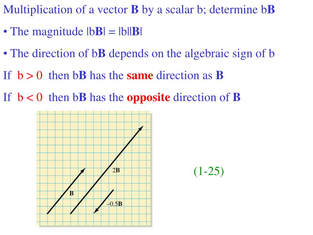 Multiplication of a vector