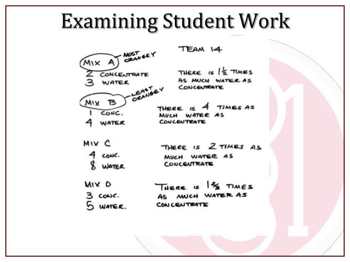 Examining Student Work