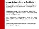 human adaptations in prehistory