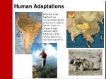 human adaptations
