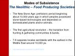 modes of subsistence the neolithic food producing societies