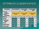 attribute classification