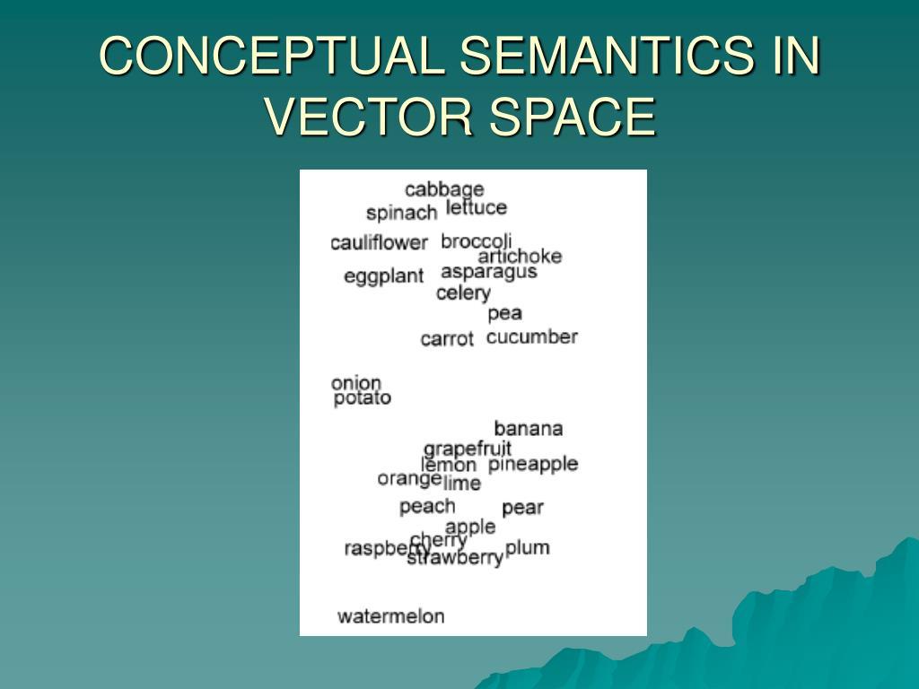 CONCEPTUAL SEMANTICS IN VECTOR SPACE