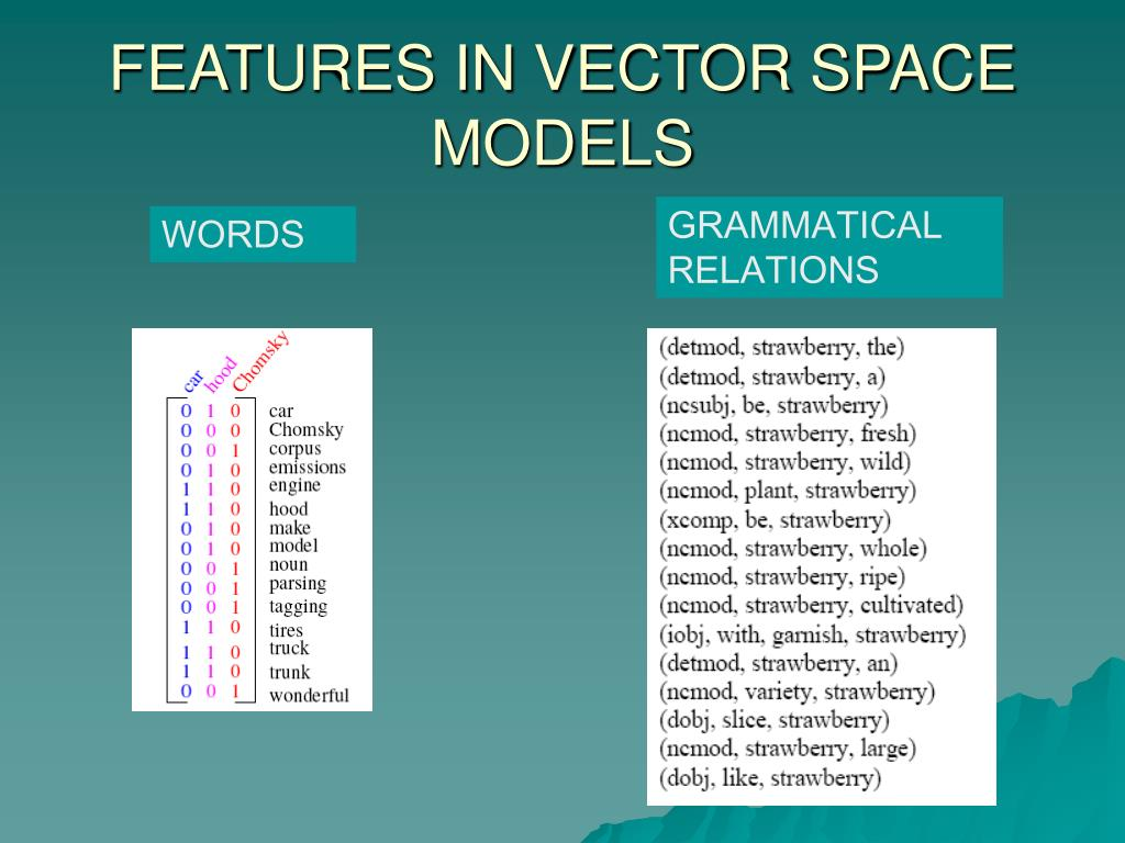 FEATURES IN VECTOR SPACE MODELS