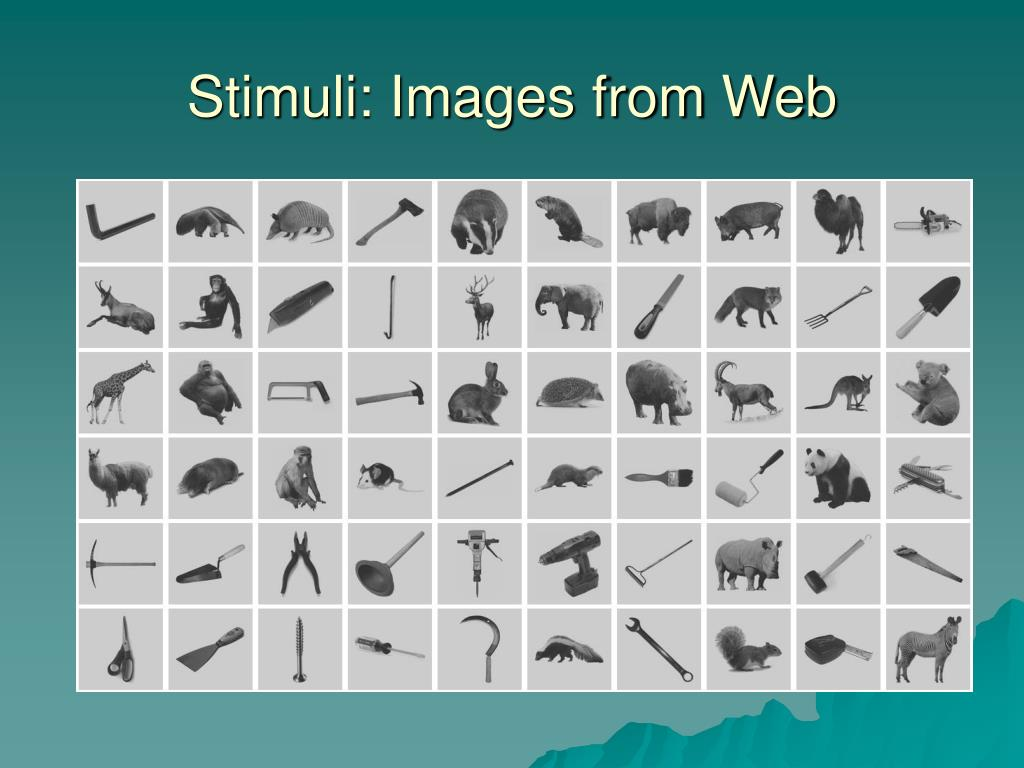 Stimuli: Images from Web