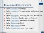insecta orders continue