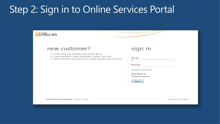 Step 2: Sign in to Online Services Portal