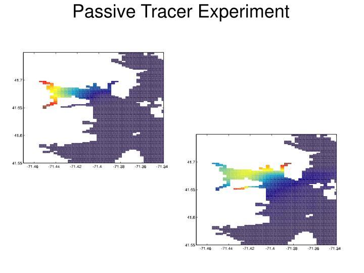 Passive Tracer Experiment