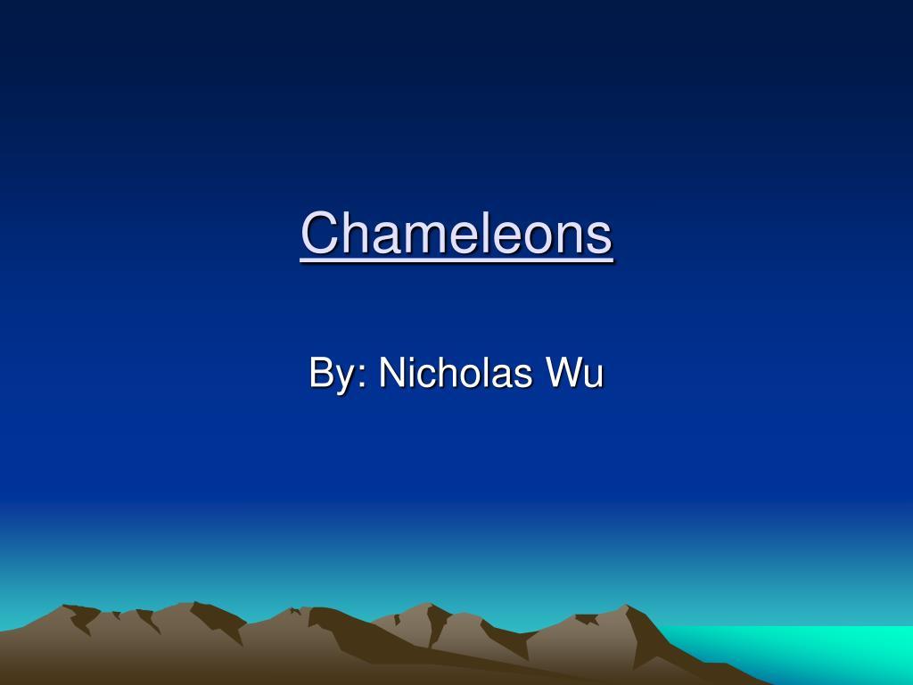 chameleons l.