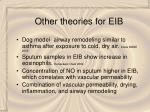 other theories for eib