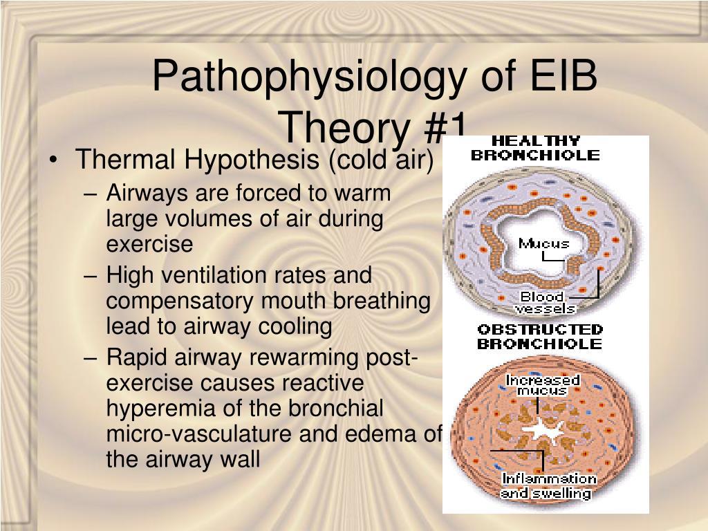 Pathophysiology of EIB