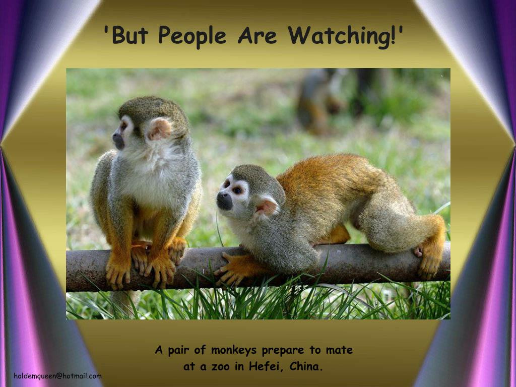'But People Are Watching!'