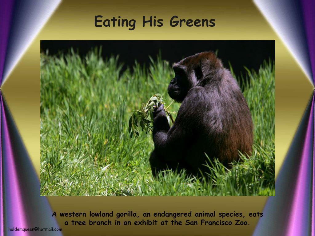 Eating His Greens