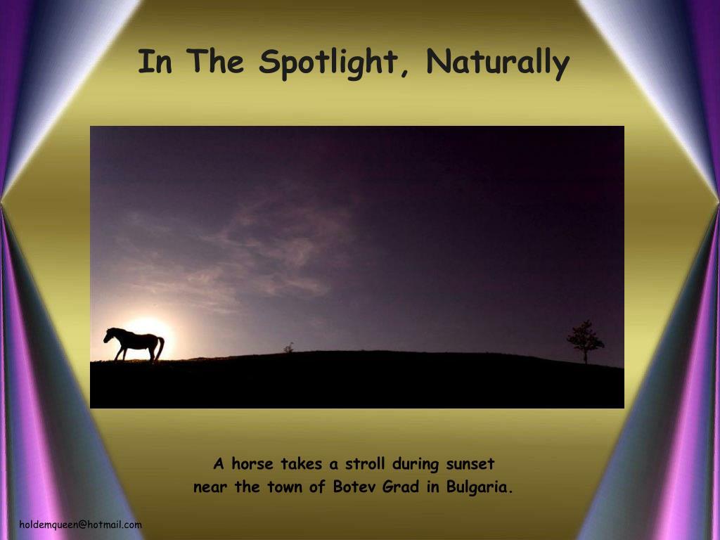 In The Spotlight, Naturally