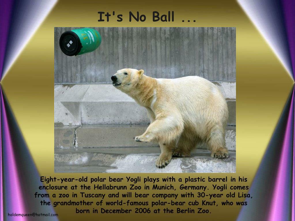 It's No Ball ...