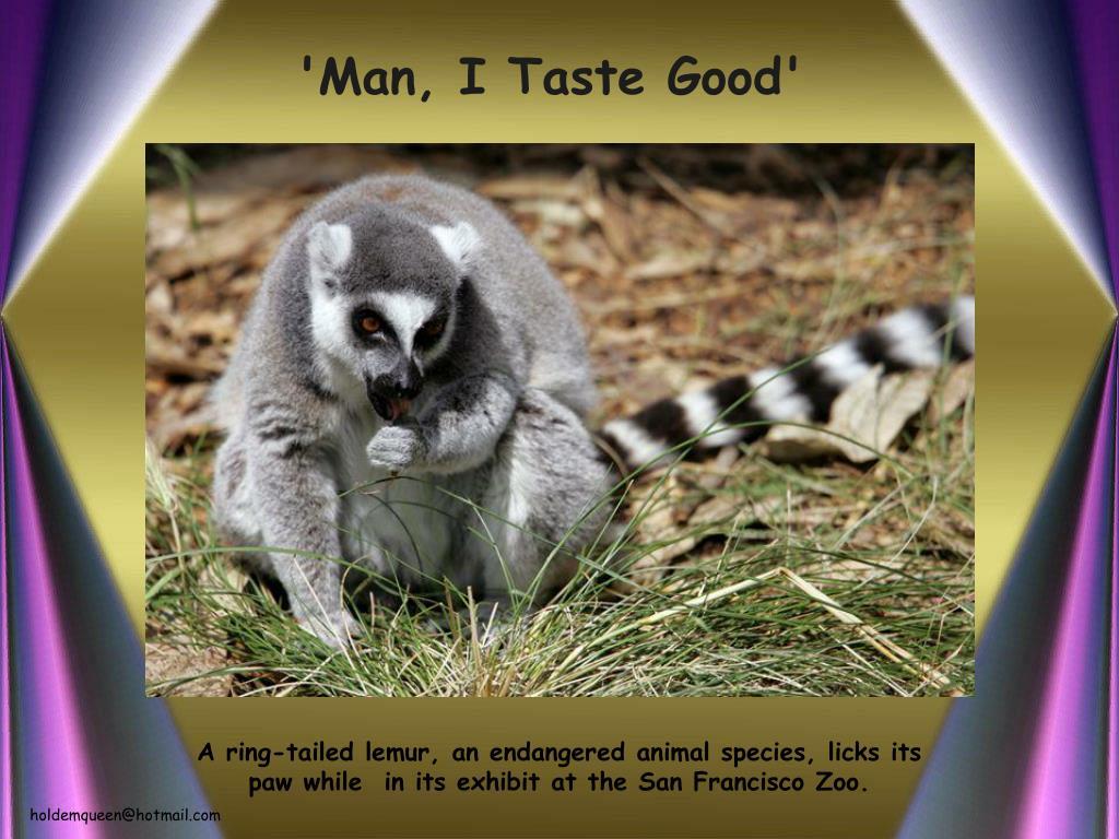 'Man, I Taste Good'