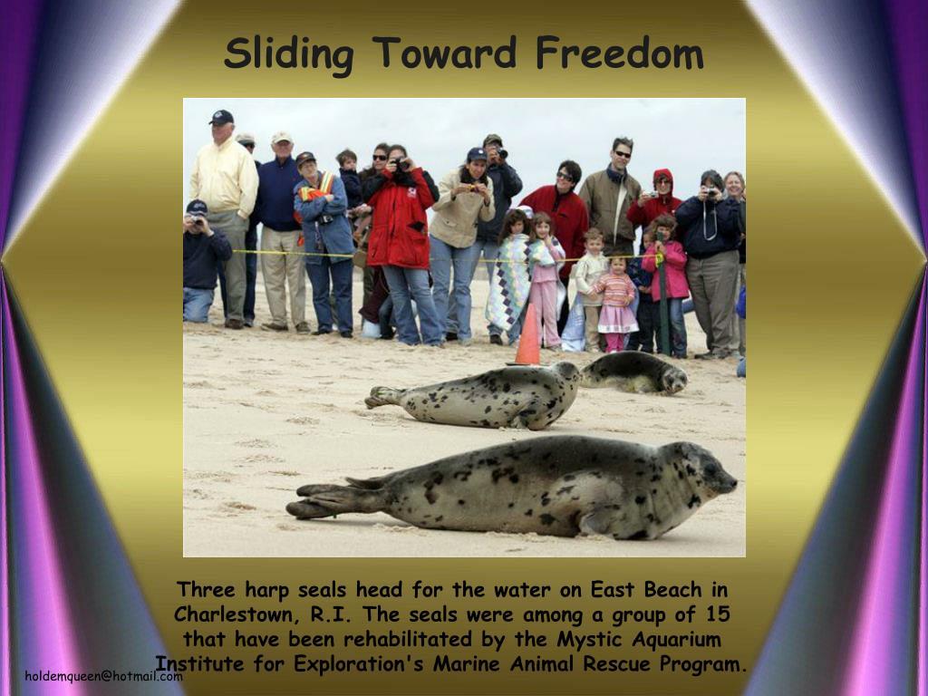 Sliding Toward Freedom