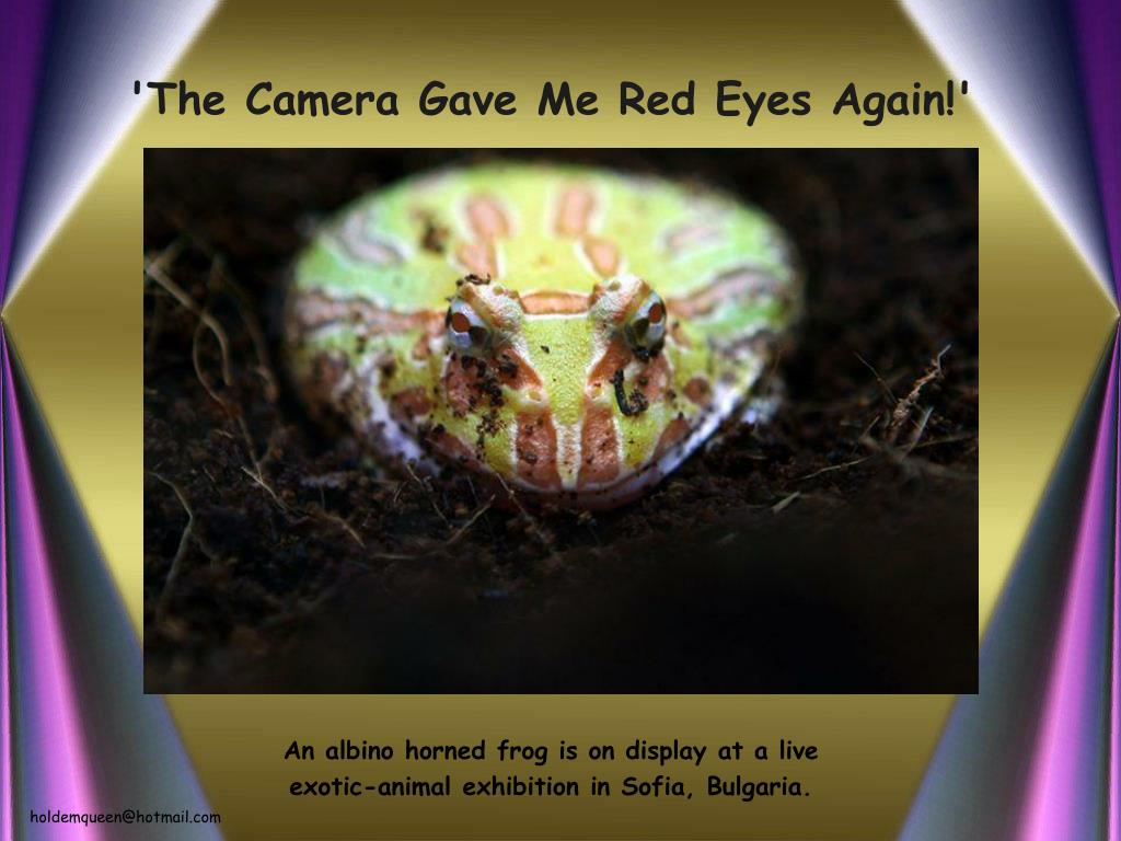 'The Camera Gave Me Red Eyes Again!'