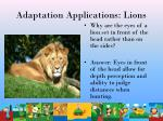 adaptation applications lions