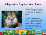 adaptation applications lions42