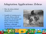 adaptation applications zebras