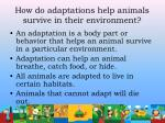 how do adaptations help animals survive in their environment