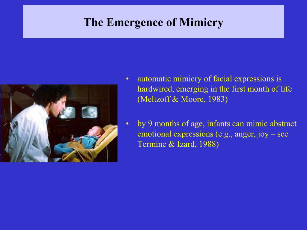 The Emergence of Mimicry