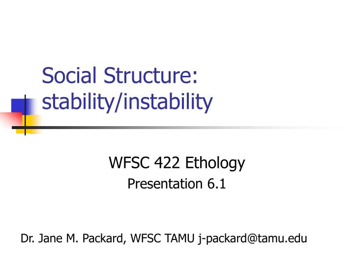 Social structure stability instability
