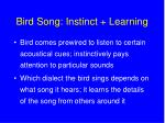 bird song instinct learning